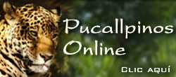Pucallpinos Online